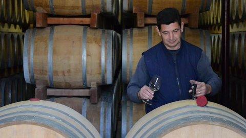 Winemaker Making Wine Test in Winery Cellar