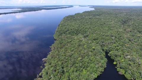 Aerial view of Negro (Black) River, Amazonia Forest. Novo Airão, Amazonas, Brazil.