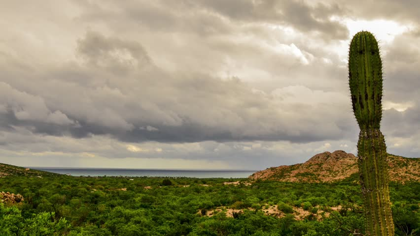 Time lapses from the coast and the desert from Cabo Pulmo, Baja california sur, mexico. where the desert meets the sea