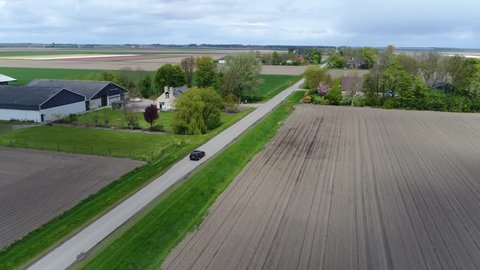 Aerial of polder landscape following car driving over straight polder road first showing tulip field on left then moving near road flying over two polder farms overcast weather spring scene 4k