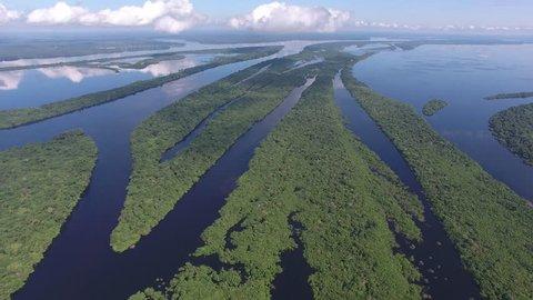 Aerial view of Anavilhanas, the biggest fluvial archipelago of the world, at Negro River, Amazon jungle, Novo Airão city, Amazonas, Brazil