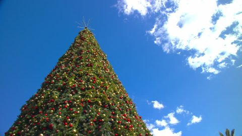 Christmas In Florida Images.Big Outside Decorated Christmas Tree Towering Into A Blue Sky On A Sunny Day With Passing White Clouds In Orlando Florida