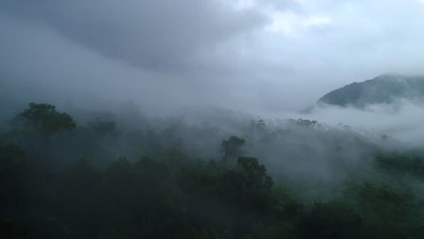 Flying above a jungle with clouds and mist