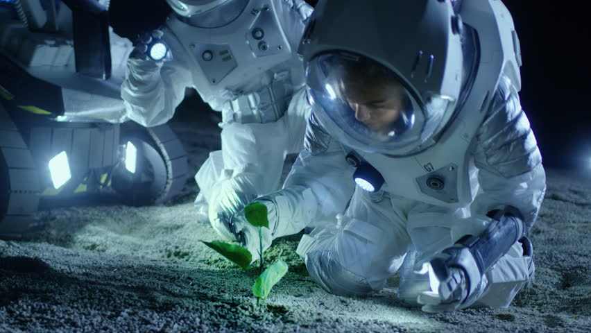 Two Astronauts on the Alien Planet Discover Plant Life. Space Travel, Discovery Of Habitable Worlds and Extraterrestrial Colonization Concept. Shot on RED EPIC-W 8K Helium Cinema Camera.