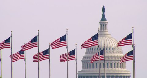 The United States Capitol Building with US Flags in Foreground Washington DC