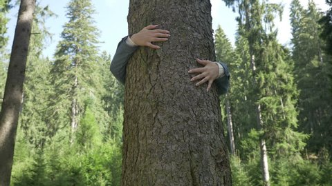Closeup of young environmentalist woman hugging a tree thank relaxing in forest nature