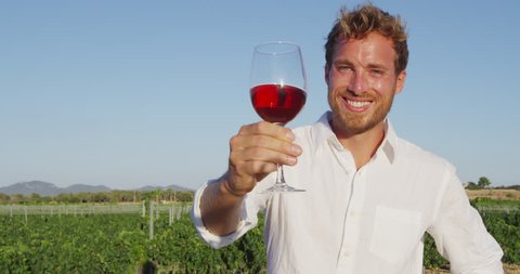 Wine. Man drinking rose or red wine toasting looking at camera at vineyard. Handsome man drinking from wine glass outdoors in front of vineyard.