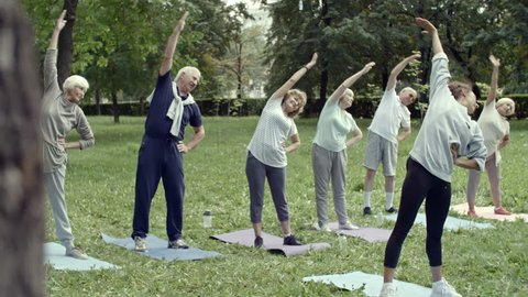 Tilt down shot of six elderly people and their trainer performing stretching exercise during group workout in park
