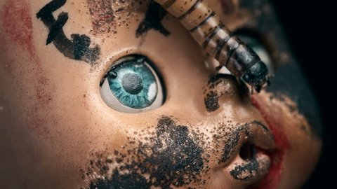 larva crawls on the face of an old doll, close-up