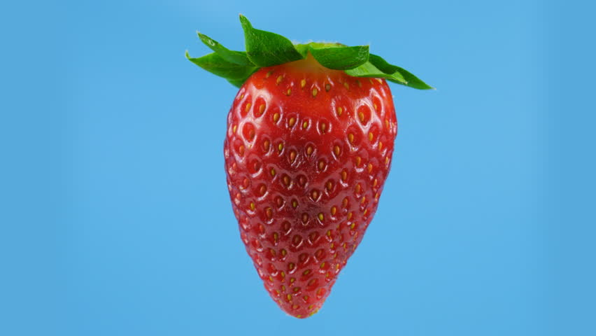 Fresh strawberry on blue background, looped rotation, ProRes codec, 422 HQ
