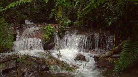 Slow motion waterfall on a pristine forest stream. In humid tropical rainforest on the Amazonian slopes of the Andes, Morona Santiago province in Ecuador