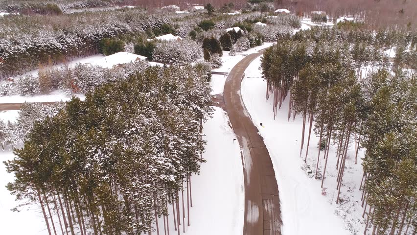 Beautiful Northern Wisconsin homes with pine trees under fresh snow, aerial view.  | Shutterstock HD Video #1008518005