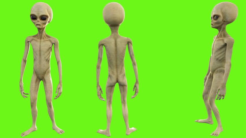 Alien talks. Loopable animation on green screen. 4k.