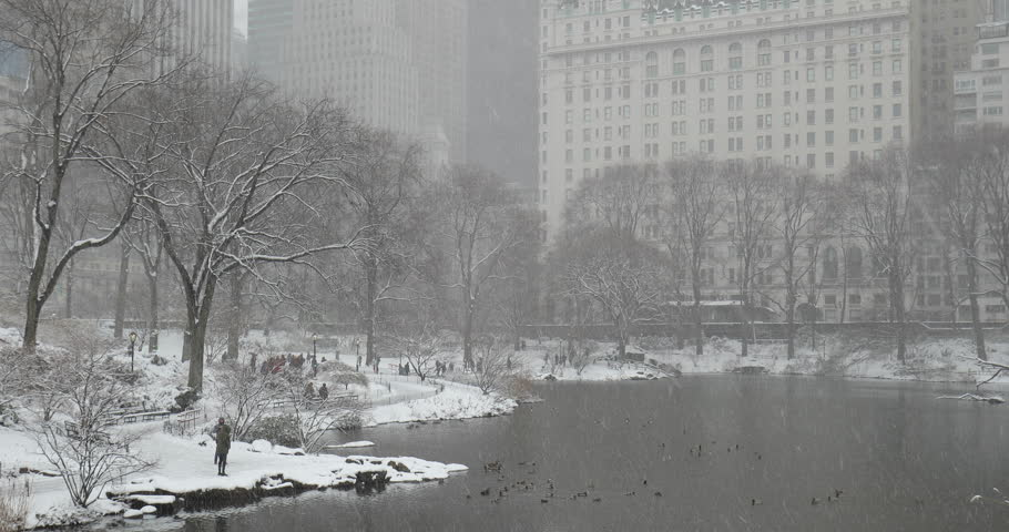 New York City Central Park in snow | Shutterstock HD Video #1008879665