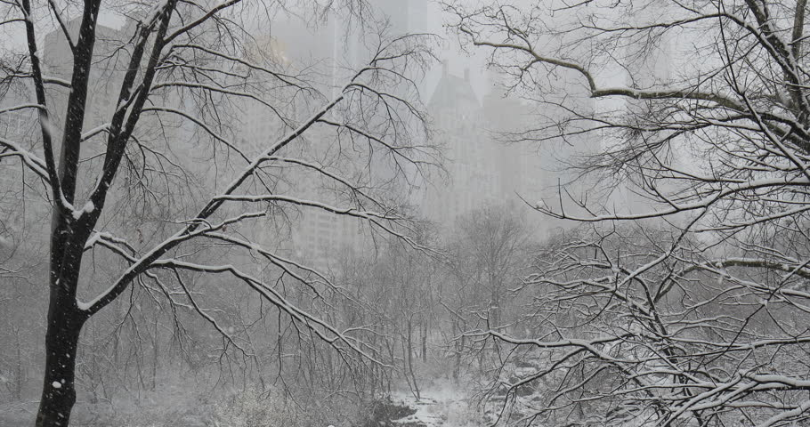 New York City Central Park in snow | Shutterstock HD Video #1008879695
