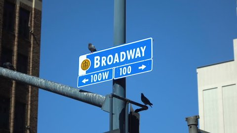 Professional video of broadway street sign in slow motion 120fps