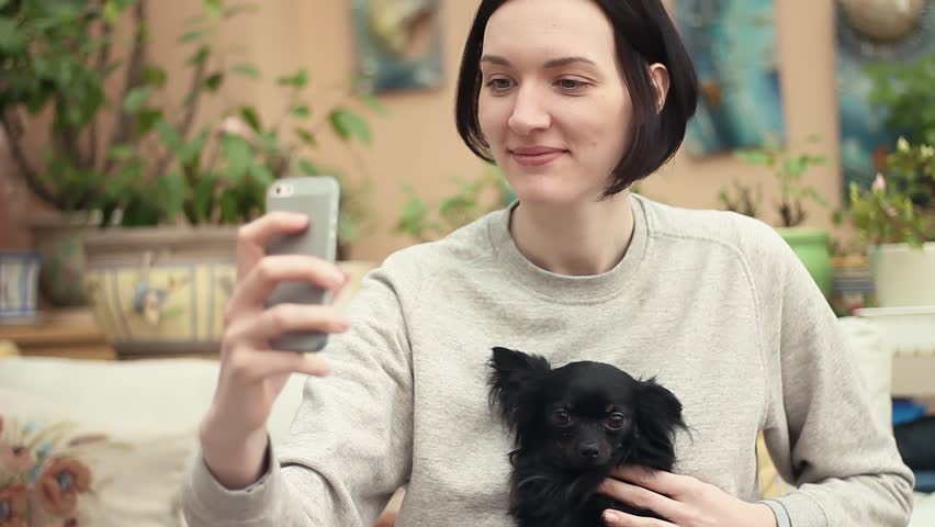 Young girl taking selfie with cute chihuahua puppy on sofa in living room. Plants and pictures on wall at background. Animals care.