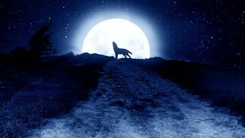 Howling wolf to the moon on the hill at night. Animation of howling wolf to the moon on the hill at night.