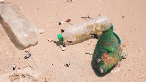 Plastic causes death of millions of marine animals throughout the planet.