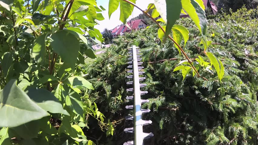 Hedge and Bush Trimming POV Slow Motion