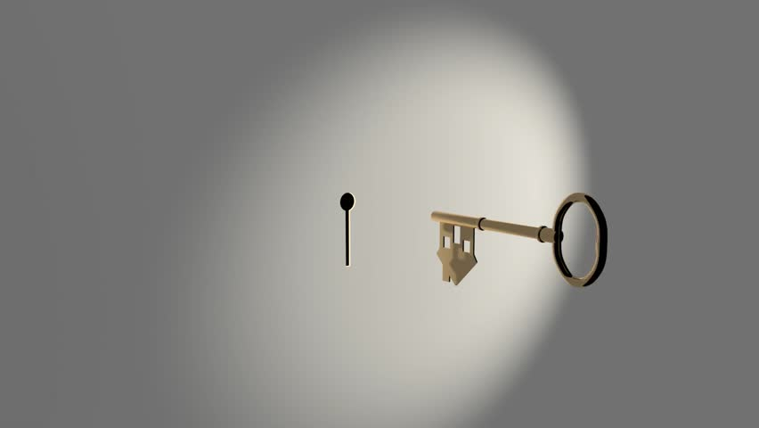 House Key Animation #1009818845