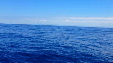 Humpback Whales (Megaptera novaeangliae) swim in Vitoria sea. Slow movements. Gray day. Image in Espirito Santo, Brazil.