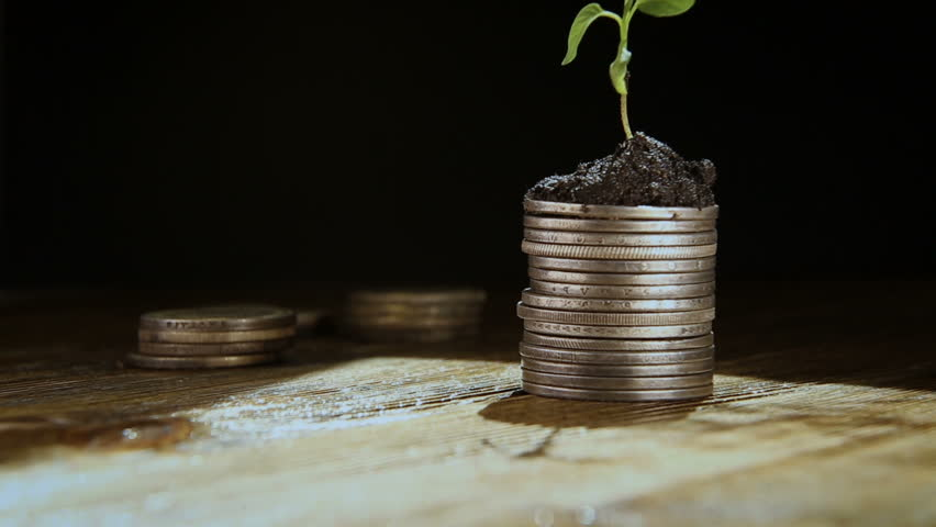 From a handful of coins the plant grows, the concept of growing well-being. | Shutterstock HD Video #1010069315