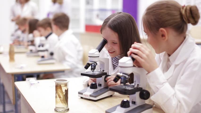 Modern biology lesson in elementary school. | Shutterstock HD Video #1010154245
