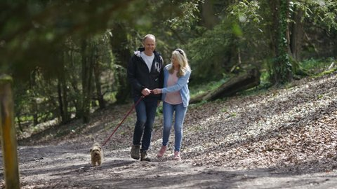 Middle aged couple walking their dog in the woods