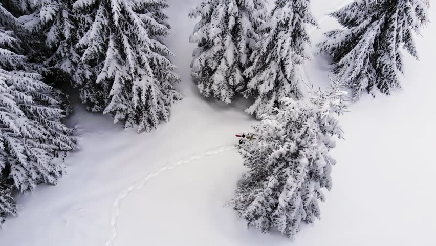 Snowboarder walking among trees with snowboard in hand. Aerial View. Walking in the snow forest.  Snowboard in the forest. Man Hiking With Snowboard Into Forest Backcountry Frozen  Forest. birds eye