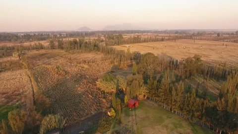 Drone shot of Xochimilco fields and chinampas at dusk, Aztec culture legacy