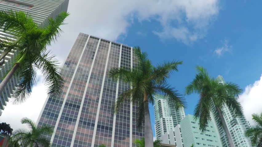 Driving through business city downtown with modern houses, skyscrapers, contemporary office buildings, hotels and big residential block of flats with lush palm trees on sidewalk in sunny Florida