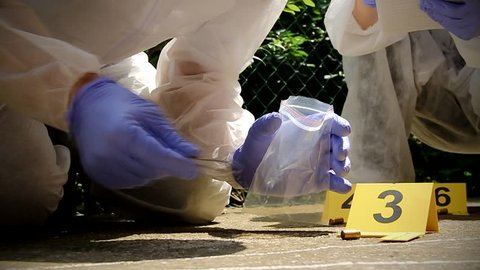 Forensic experts team  collect evidence at the crime scene. Forensic science