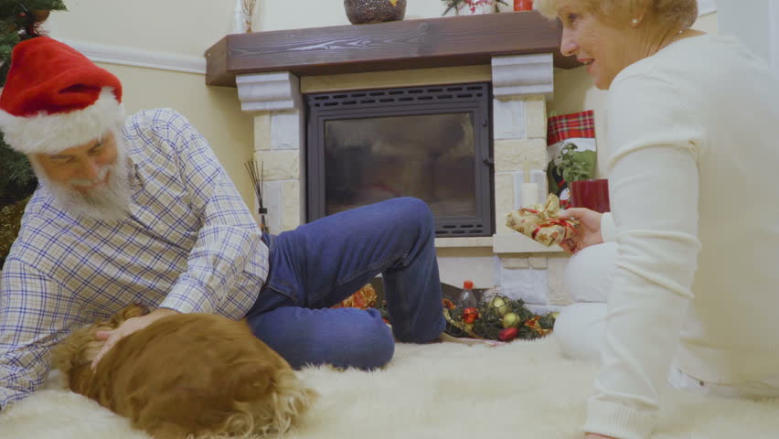 Adult couple play with their dog near Christmas tree | Shutterstock HD Video #1011438785
