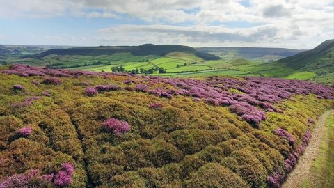 North Yorks Moors National Park, Yorkshire, England :