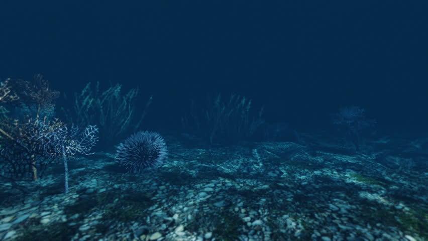 Underwater fish 3d animation | Shutterstock HD Video #1011508325