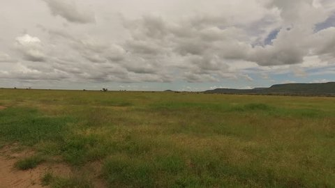 Landscape Serengeti, smooth and stable footage. Tanzania, Africa