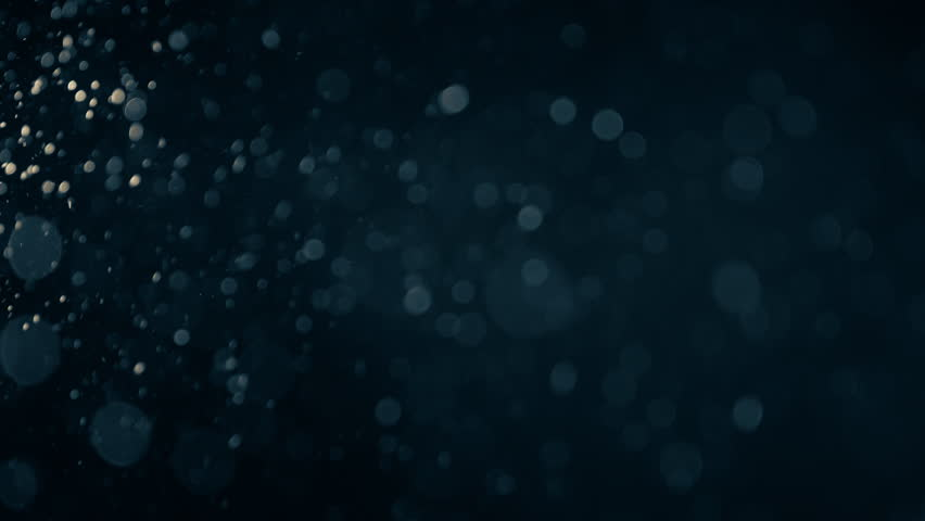 Natural Organic Dust Particles Floating On Black Background. Dynamic Dust Particles Randomly Float In Space With Fast And Slow Motion. Shimmering Glittering Colored Particles With Bokeh In The Air. | Shutterstock HD Video #1011848315