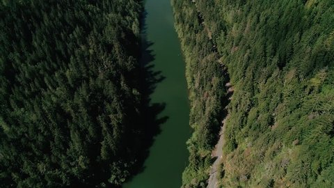 Nisqually River Green Trees Aerial
