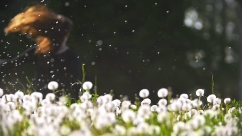 Young woman running from the meadow of dandelions through the fluff flying in the air