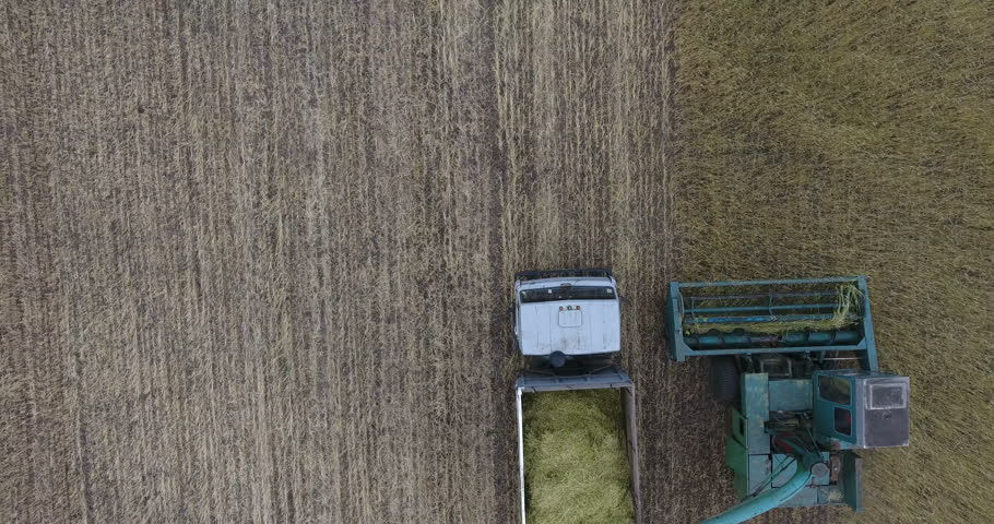 Flight vertically over tractor and grain mower harvesting wheat with truck. Vertical top view of an agricultural farm field with old mowing-machine