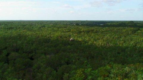 Tip of Mayan Pyramid in Lush Jungle