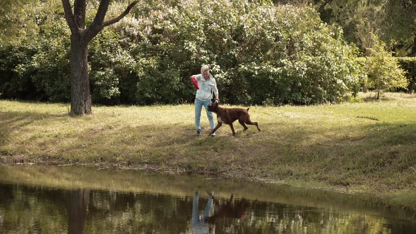 Image of: Instagram Girl Plays Round Soft Toy With Her Dog In Nature On The Shore Of Pond Concept Dog Is Mans Best Friend Love Of Animals National Geographic Kids Girl Plays Round Soft Stock Footage Video 100 Royaltyfree