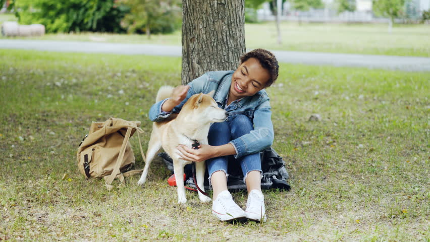 Young African American woman is caressing adorable puppy resting in the park on green lawn and talking to pet with kindness and adoration. People and animals concept. #1012911905