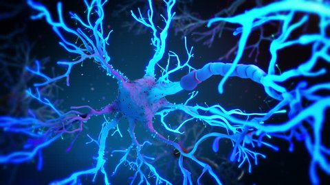 Neuron cell synapse network activity inside brain with fluid. Nervous system.