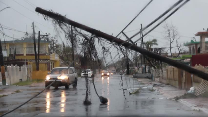 Cars driving under fallen trees left by hurricane maria | Shutterstock HD Video #1013114765