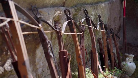 Crossbows. Weapons of medieval knight.