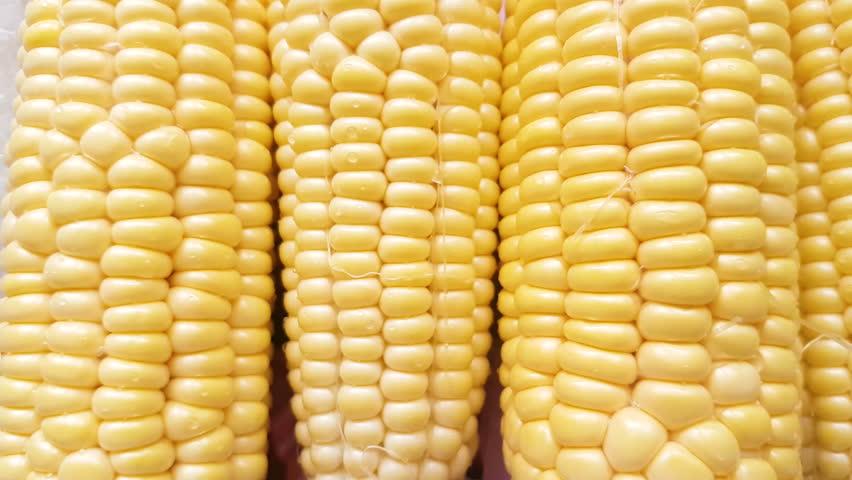 Sweet yellow fresh corn close up sliding. | Shutterstock HD Video #1013206835