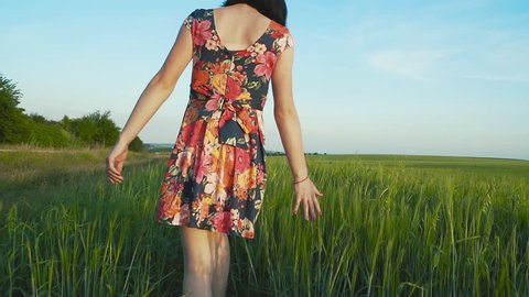 beautiful, attractive European girl with long leggs in short skirt with flowers walks in a rye field and strokes the rye spikes by hand, rear view, slow motion