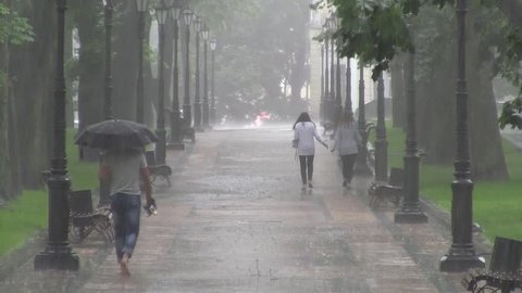 People running in the rain by park alley.